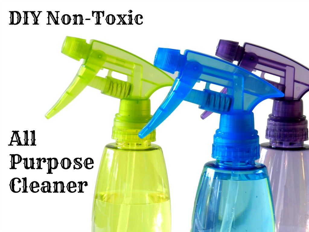 DIY Non-Toxic All Purpose Cleaner