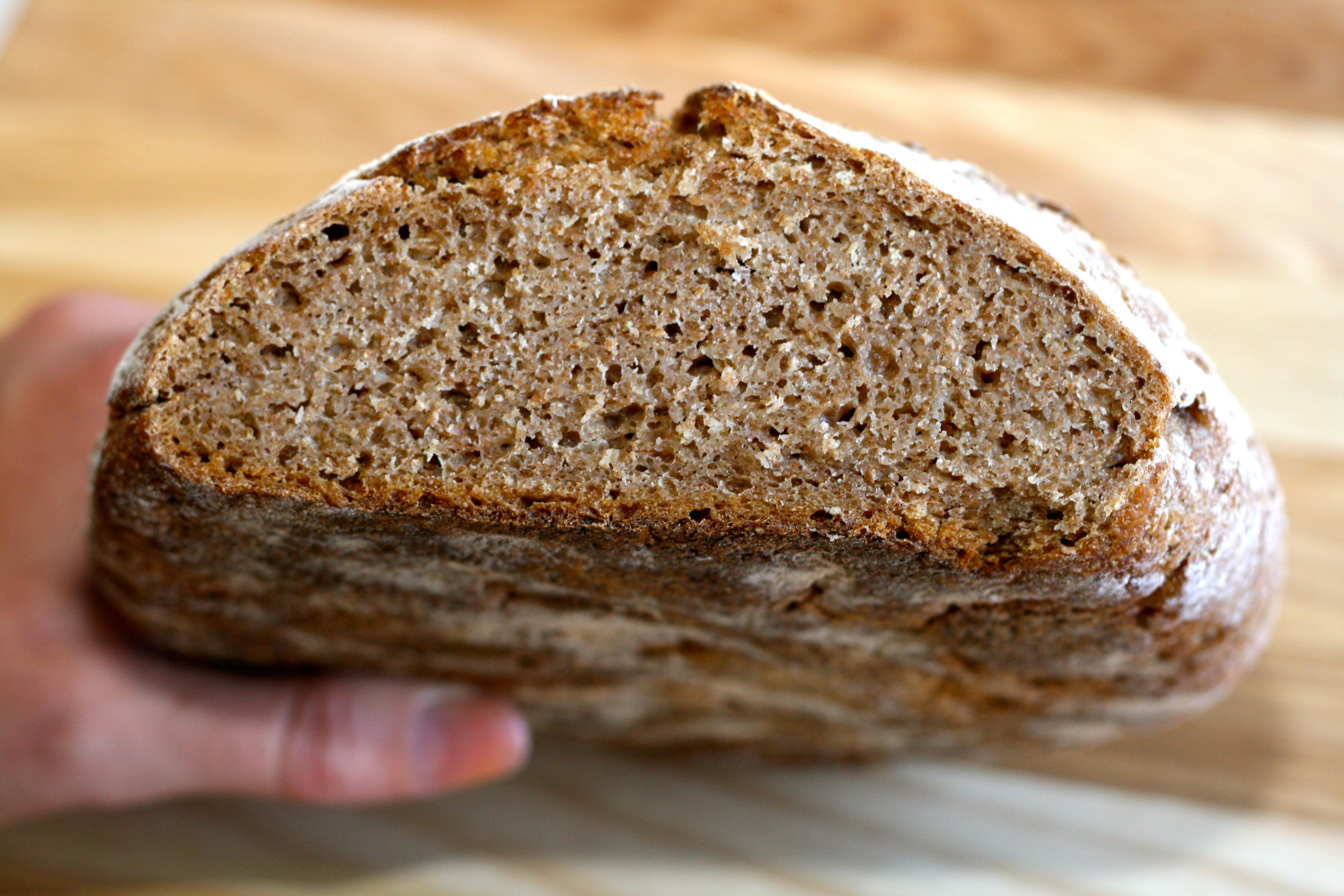 Are Grains Bad for You? The Good, The Bad, and The Ugly