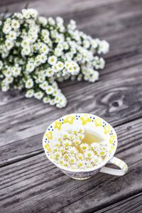 How to get Rid of Stomach Bloat-Chamomile Tea